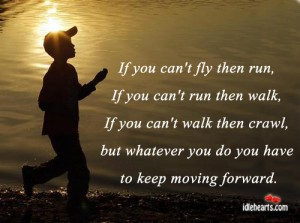 If you can't fly then run