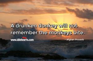 Drunken donkey will not remember the monkeys bite