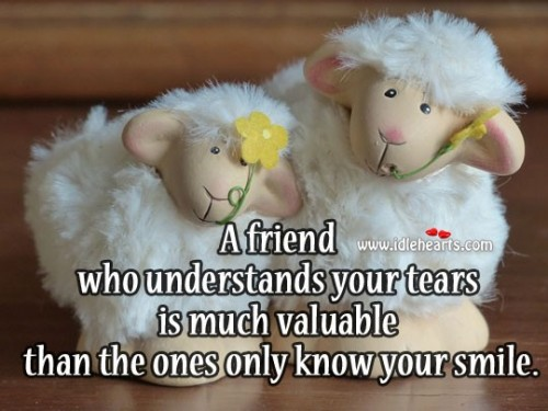 A friend understands your tears