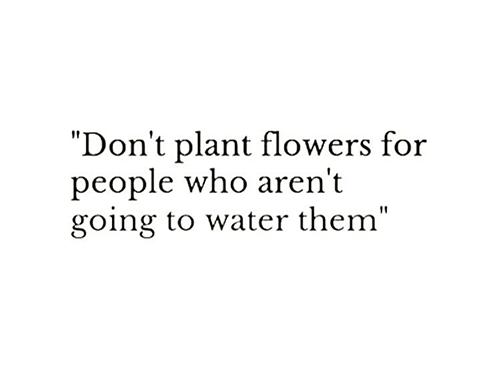 Don't plant