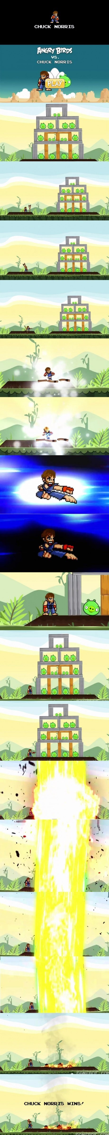 Chuck norris and angry birds