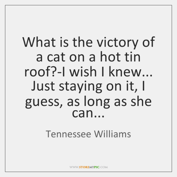 What is the victory of a cat on a hot tin roof?...