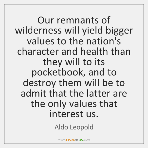 Our remnants of wilderness will yield bigger values to the nation's character ...