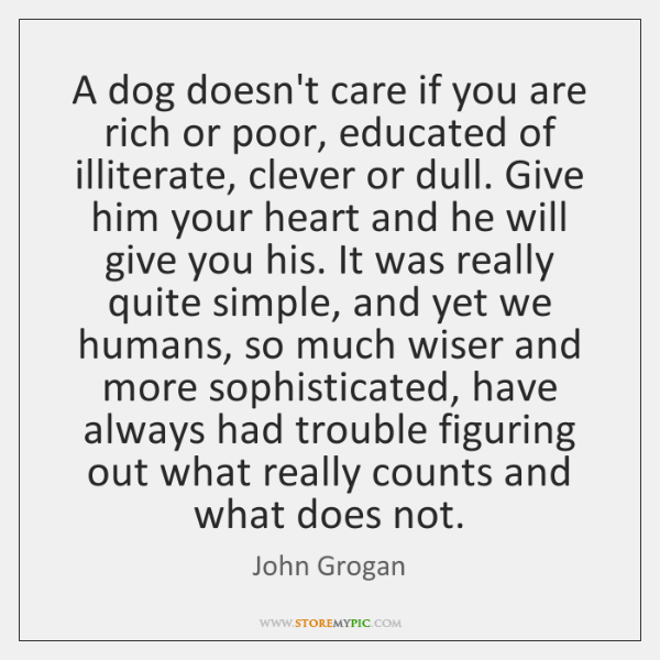 A dog doesn't care if you are rich or poor, educated of ...