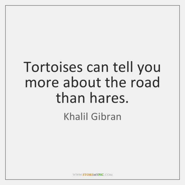 Tortoises can tell you more about the road than hares.