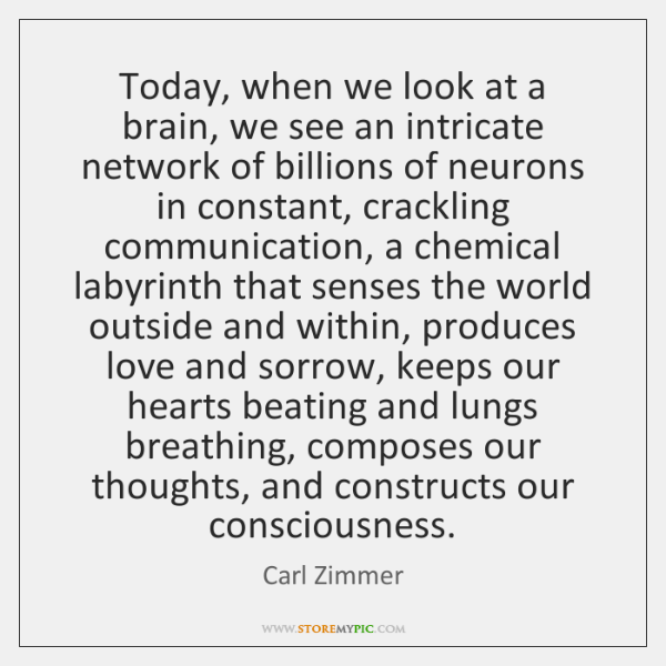Today, when we look at a brain, we see an intricate network ...