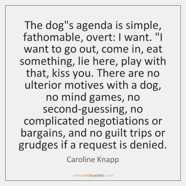 The dog's agenda is simple, fathomable, overt: I want.