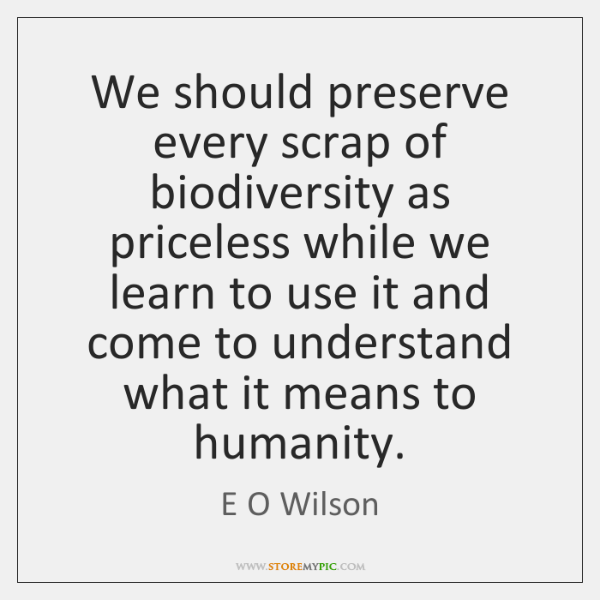 We should preserve every scrap of biodiversity as priceless while we learn ...