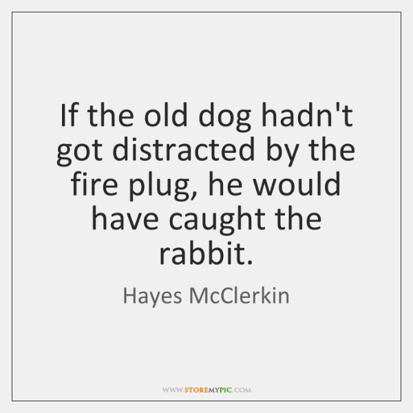 If the old dog hadn't got distracted by the fire plug, he ...