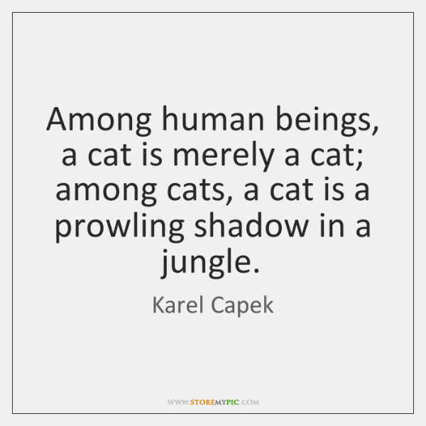 Among human beings, a cat is merely a cat; among cats, a ...