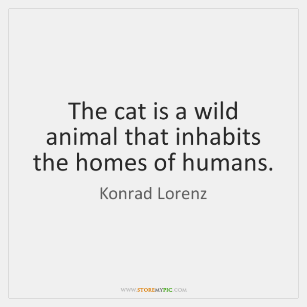 The cat is a wild animal that inhabits the homes of humans.