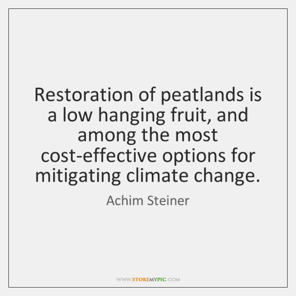 Restoration of peatlands is a low hanging fruit, and among the most ...