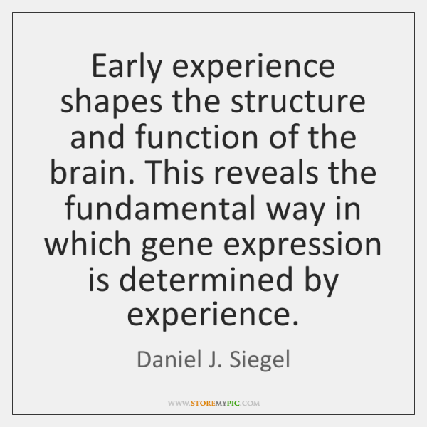 Early experience shapes the structure and function of the brain. This reveals ...