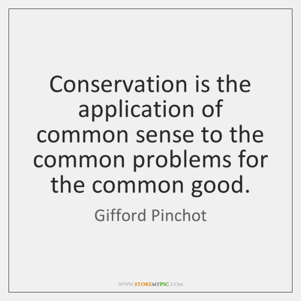Conservation is the application of common sense to the common problems for ...