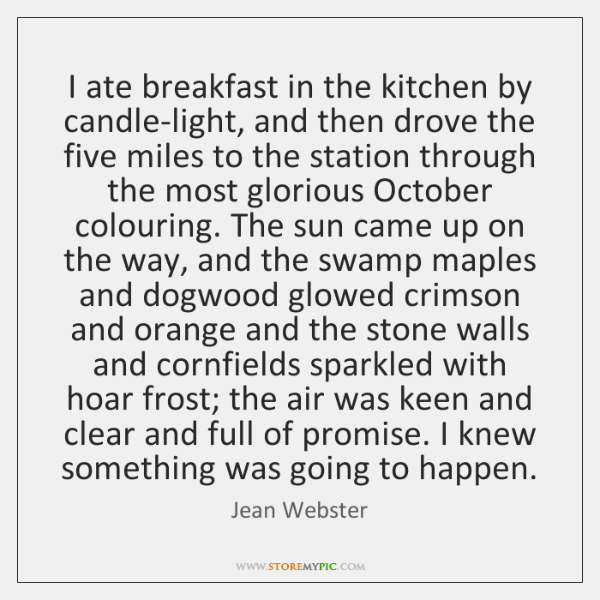 I ate breakfast in the kitchen by candle-light, and then drove the ...
