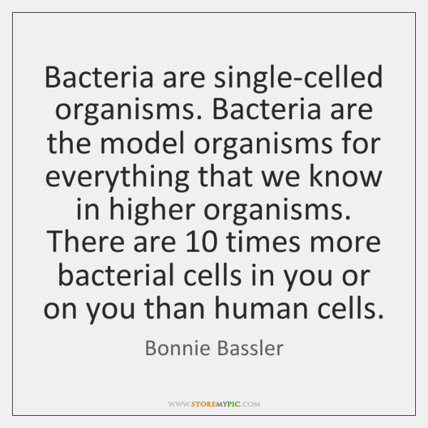 Bacteria are single-celled organisms. Bacteria are the model organisms for everything that ...