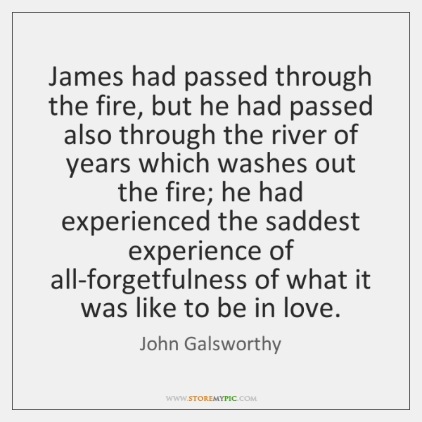 James had passed through the fire, but he had passed also through ...