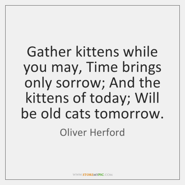 Gather kittens while you may, Time brings only sorrow; And the kittens ...