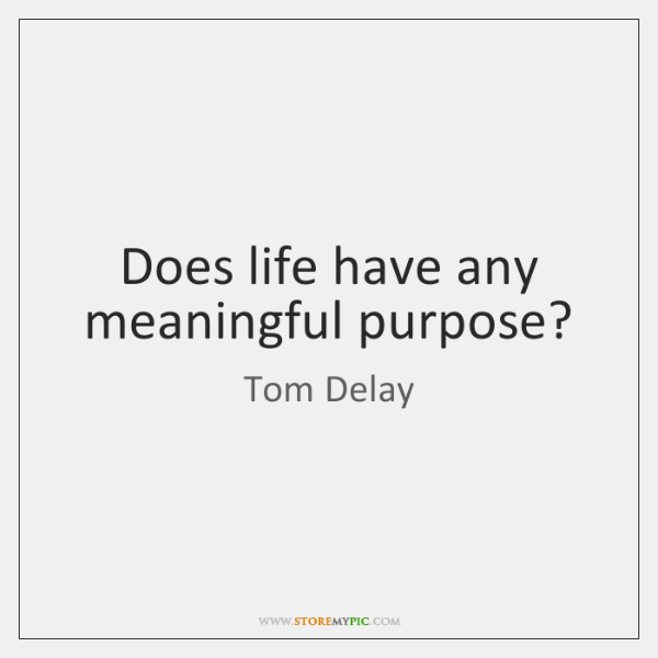 Does life have any meaningful purpose?