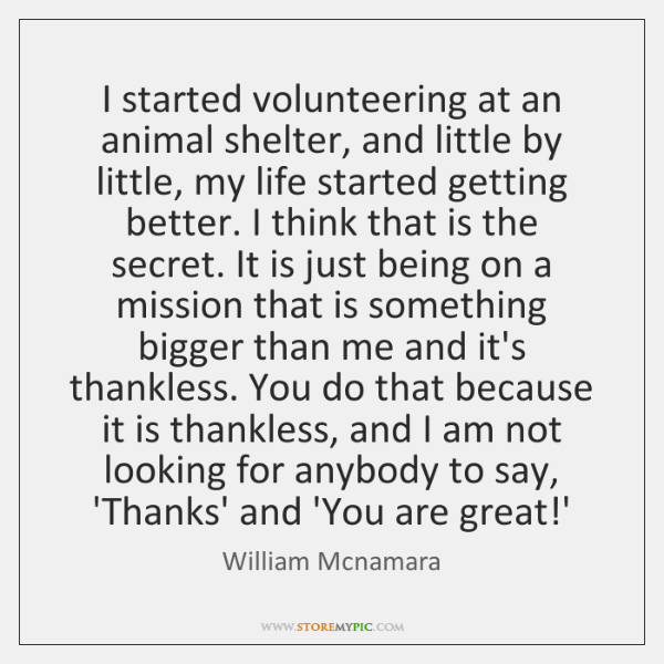 I started volunteering at an animal shelter, and little by little, my ...