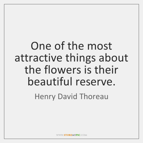 One of the most attractive things about the flowers is their beautiful ...