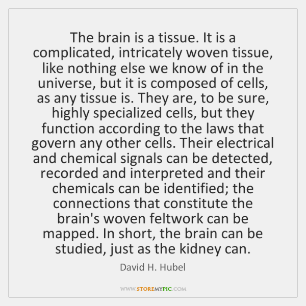 The brain is a tissue. It is a complicated, intricately woven tissue, ...