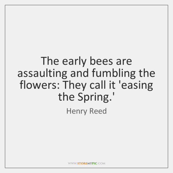 The early bees are assaulting and fumbling the flowers: They call it ...