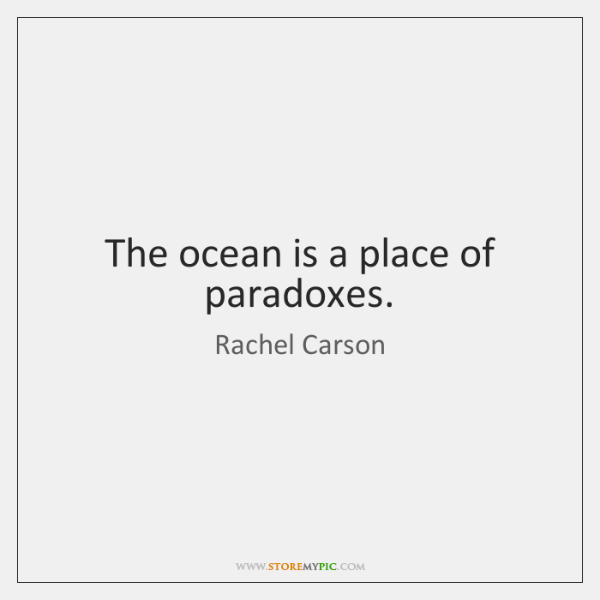 The ocean is a place of paradoxes.