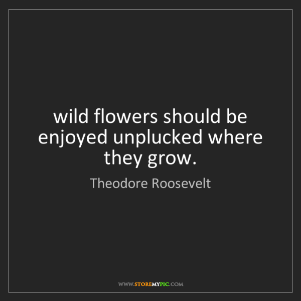 Theodore Roosevelt: wild flowers should be enjoyed unplucked where they grow.