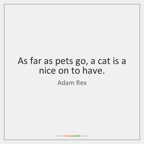 As far as pets go, a cat is a nice on to ...