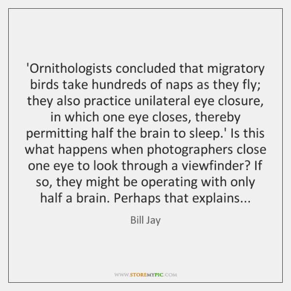 'Ornithologists concluded that migratory birds take hundreds of naps as they fly; ...