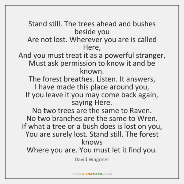 Stand still. The trees ahead and bushes beside you  Are not lost. ...