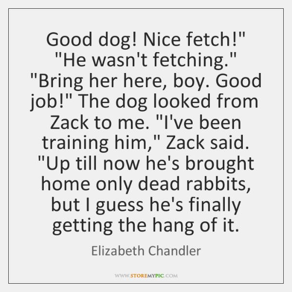 Good dog! Nice fetch!