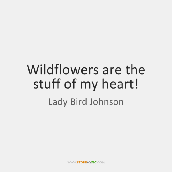 Wildflowers are the stuff of my heart!
