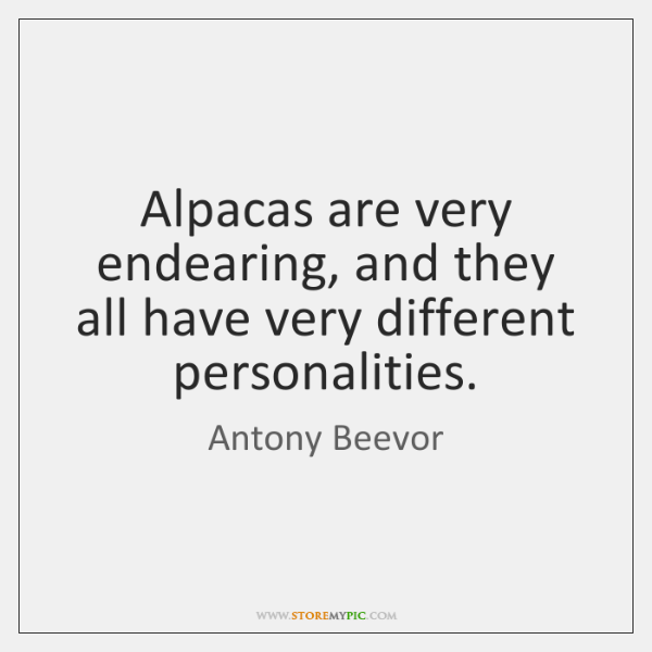 Alpacas are very endearing, and they all have very different personalities.