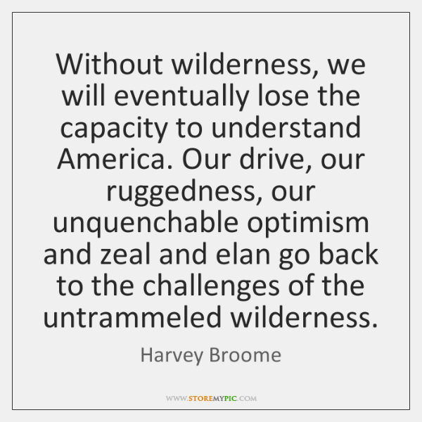Without wilderness, we will eventually lose the capacity to understand America. Our ...