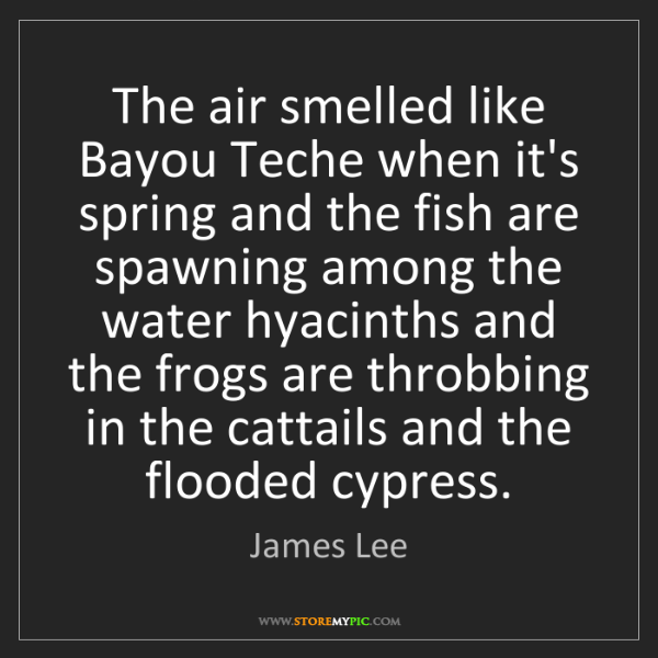 James Lee: The air smelled like Bayou Teche when it's spring and...