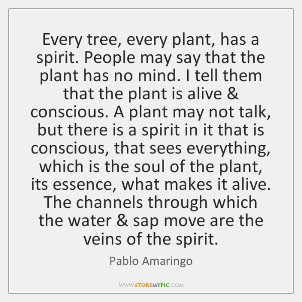 Every tree, every plant, has a spirit. People may say that the ...