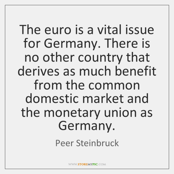 The euro is a vital issue for Germany. There is no other ...