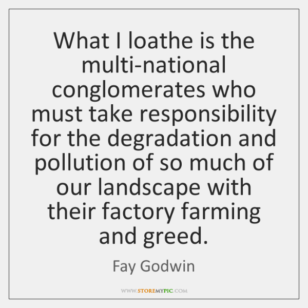 What I loathe is the multi-national conglomerates who must take responsibility for ...