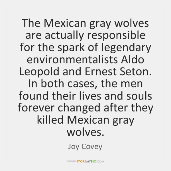 The Mexican gray wolves are actually responsible for the spark of legendary ...