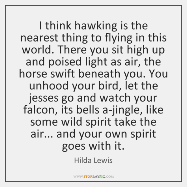 I think hawking is the nearest thing to flying in this world. ...