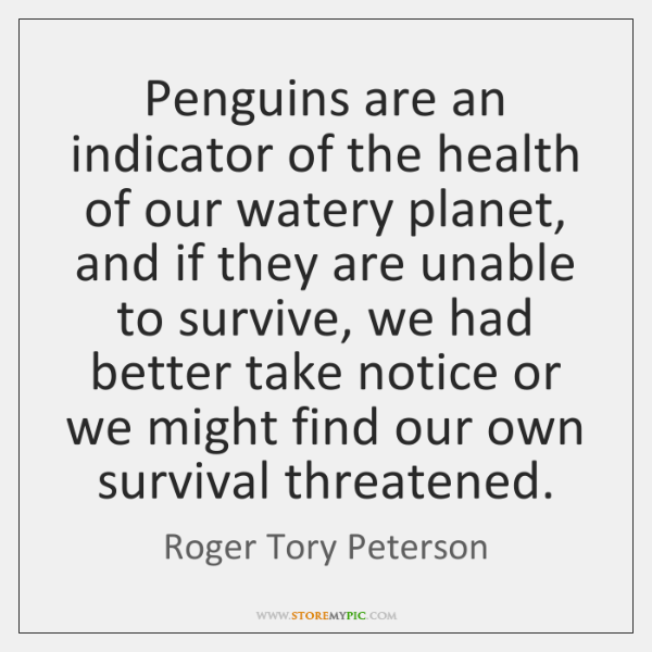 Penguins are an indicator of the health of our watery planet, and ...