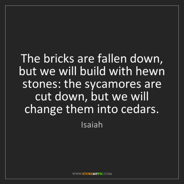 Isaiah: The bricks are fallen down, but we will build with hewn...