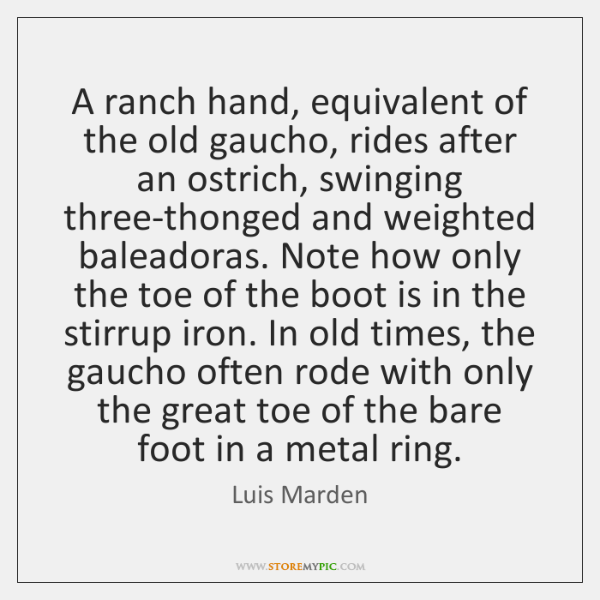 A ranch hand, equivalent of the old gaucho, rides after an ostrich, ...