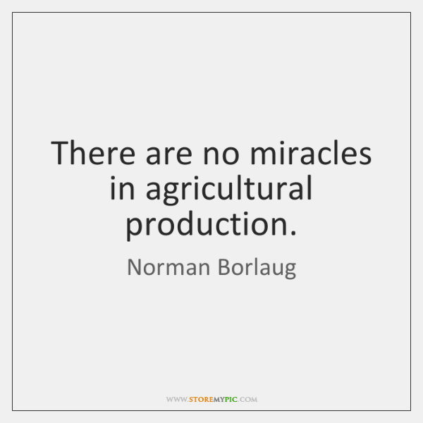 There are no miracles in agricultural production.