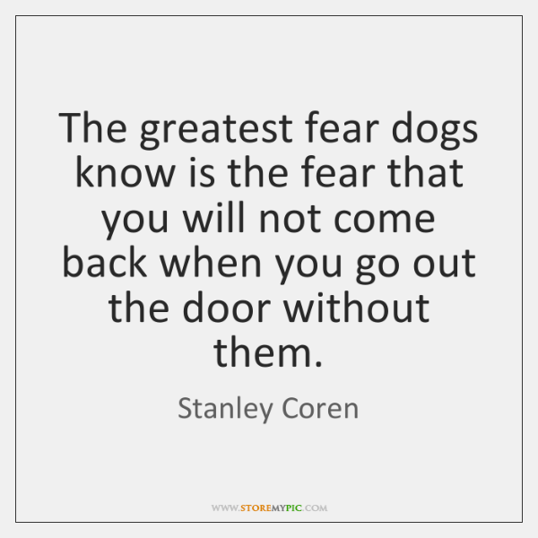 The greatest fear dogs know is the fear that you will not ...