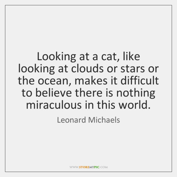 Looking at a cat, like looking at clouds or stars or the ...