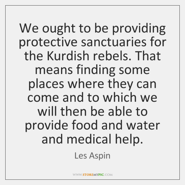 We ought to be providing protective sanctuaries for the Kurdish rebels. That ...