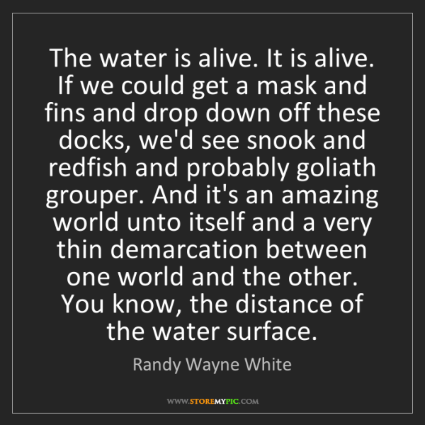 Randy Wayne White: The water is alive. It is alive. If we could get a mask...